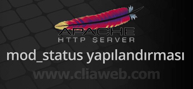apache-2-4-mod_status-kurulumu