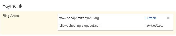blogger-domain-yonlendirme-8