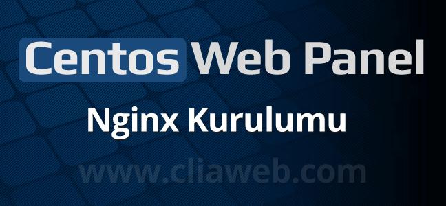cwp-panel-nginx-proxy-kurulumu