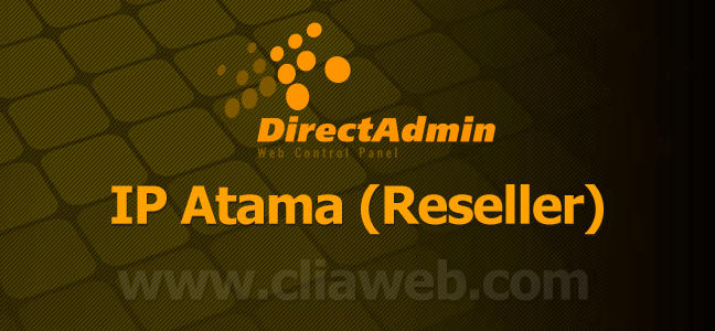 directadmin-ip-atama-reseller