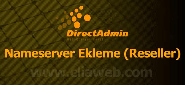 directadmin-nameserver