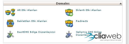 domain-ekleme-1