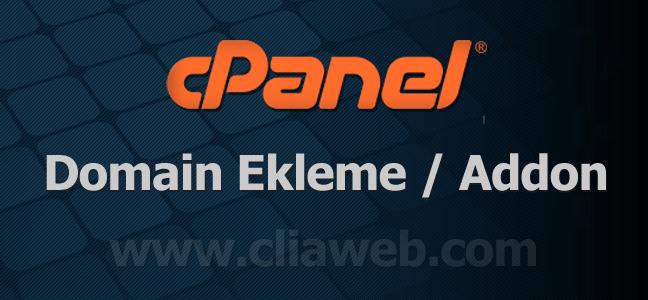 domain-ekleme