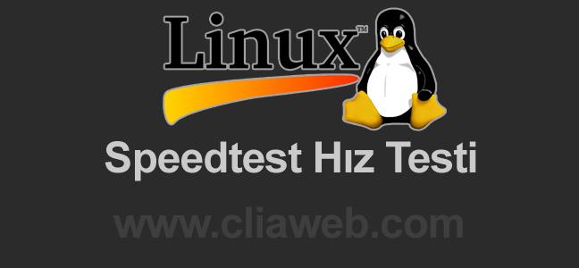 linux hız testi