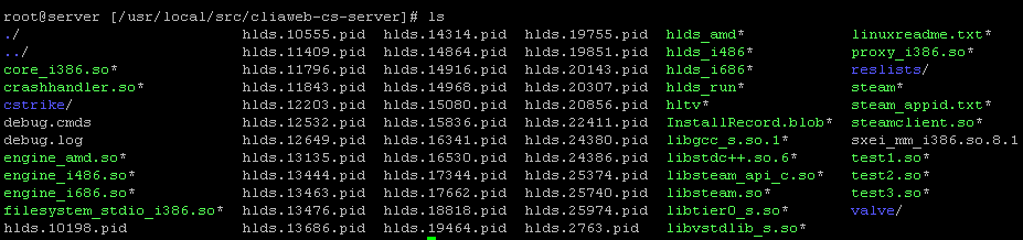 linux-cs-server-nasil-kurulur