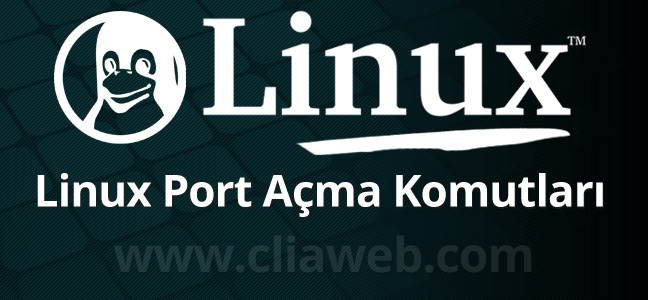 linux-post-acma-komutlari