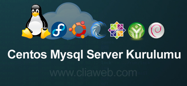 myql-server-kurulum