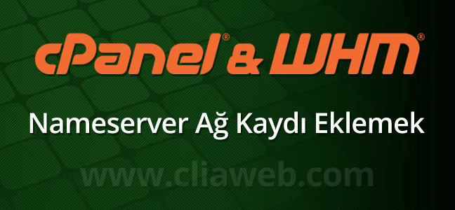 nameserver-ag-kaydi-ns1-ns2-ekleme
