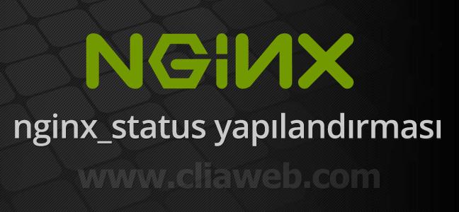 nginx_status-durum-sayfasi-acmak-1