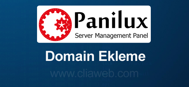 panilux-domain-ekleme