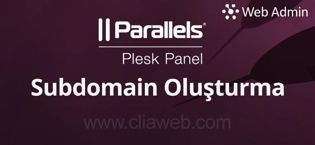 plesk-panel-subdomain-olusturma