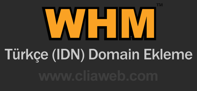turkce-idn-domain-ekleme