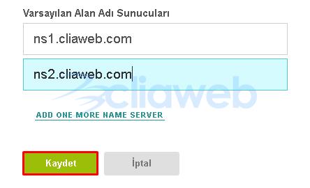 vesta-cp-domain-nameserver-dns-ayarlari-2