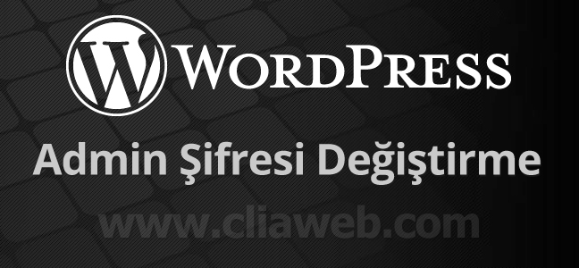 wordpress-admin-sifresi-degistirme