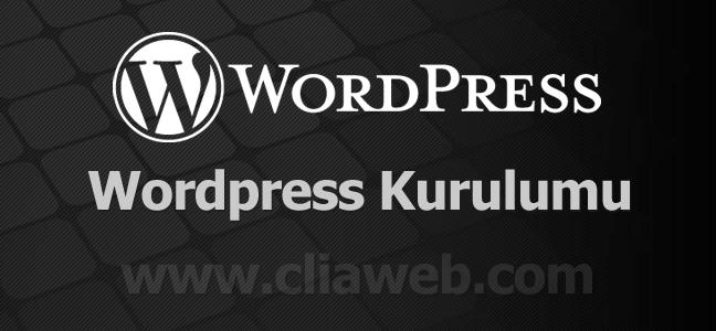 wordpress-kurulum